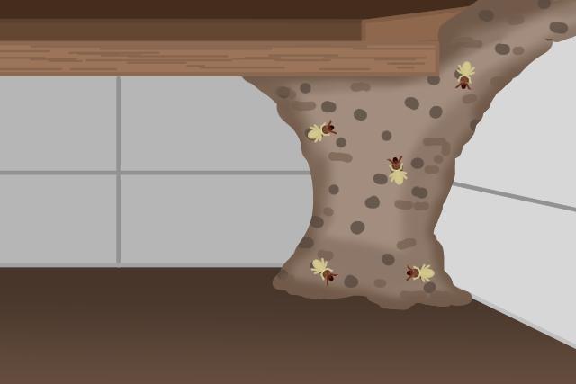 シロアリの巣 床下