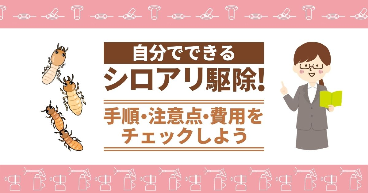 シロアリ駆除方法【DIYならベイト工法がおすすめ】手軽に安く巣ごと撃退!