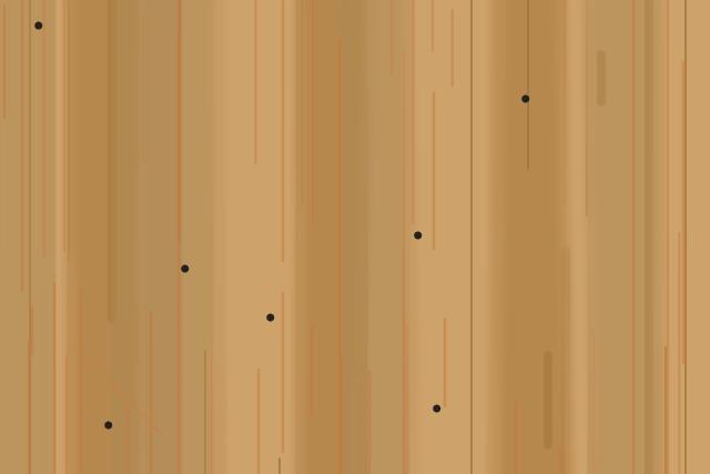 アメリカカンザイシロアリ 蹴り出し穴